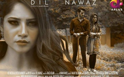 Dil Nawaz Episode 16 and 17 Review-Chains Of Love And Obsession!