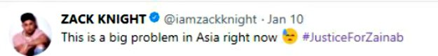 Cara Delevingne Supports #JusticeforZainab