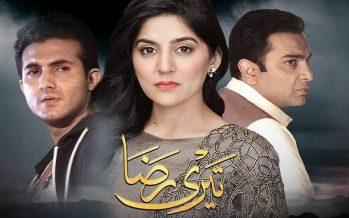 Teri Raza Last Episode Review – Halala Haul!