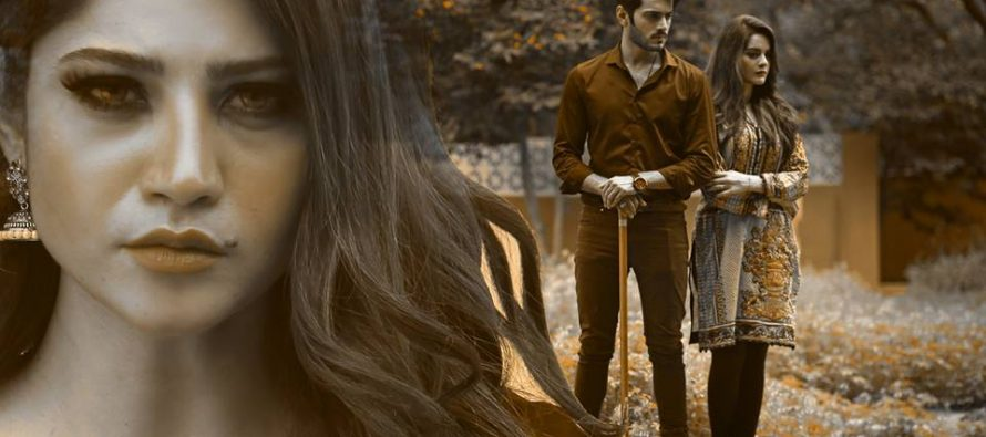 Dil Nawaz Episode 23-25 Review- Slow Developments!