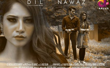 Dil Nawaz Last Episode Review-Simply Superb!