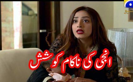 Ghar Titli ka Par Episode 18 | Voice Review | Anji ki Nakaam Koshish