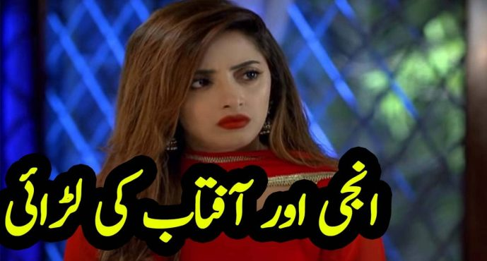 Ghar Titli ka Par Episode 22 Urdu Review | Anji ki aftab se larai