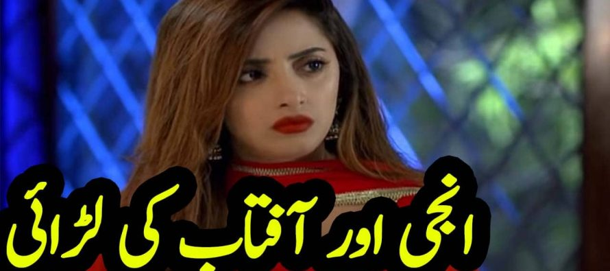 Ghar Titli ka Par Episode 22 Urdu Review | Anji ki aftab se larai