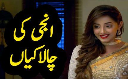 Ghar Titli Ka Par Episode 21 Full Story Audio Review In Urdu