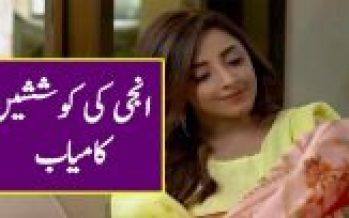 Ghar Titli Ka Par episode 23 Full Story Review in Urdu Voice