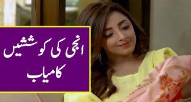 Ghar Titli Ka Par episode 23 Full Story Review in Urdu Voice