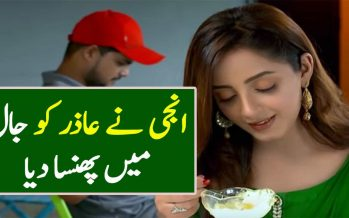 Ghar Titli Ka Par Episode 24 Full Story Urdu Review