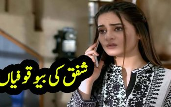 Ghar Titli Ka Par Episode 20 Full Story Audio Review in Urdu