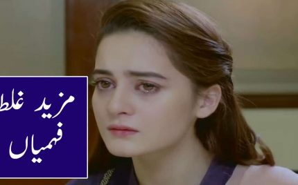 Bedardi Episode 13 Full Episode Review in Urdu
