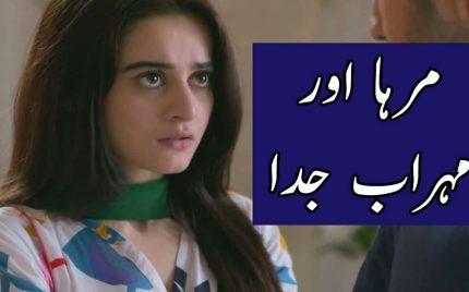 Watch Ishq Tamasha Episode 19 Full Story Review in Urdu
