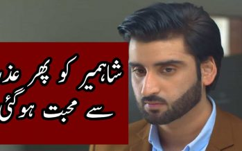 Watch Mere Bewafa Episode 20 Full Story Review in Urdu