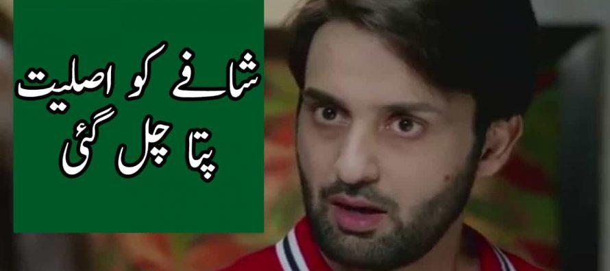 Watch Bay Dardi Episode 16 -17 Full Story Review in Urdu