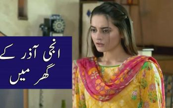 Watch Ghar Titli Ka Par Episode 26 Full Story Review in Urdu