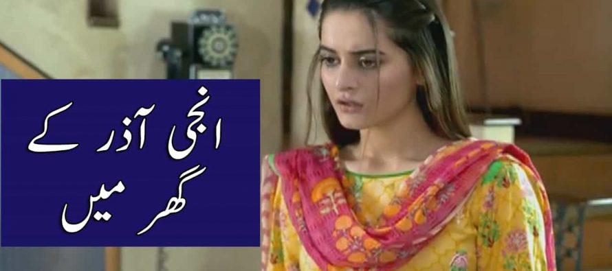 Watch Ghar Titli Ka Par Episode 26 Full Story Review in Urdu