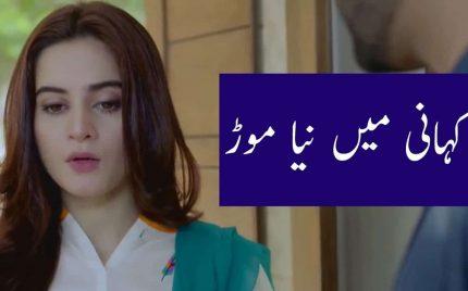Baydardi Epiosde 14 & 15 Audio Review in Urdu – Kahani Main Naya Mor