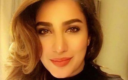Mehwish Hayat Thinks 'Actor In Law' Inspired Shahid Kapoor's Upcoming Film