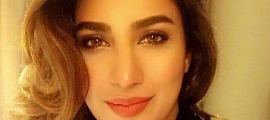Mehwish Hayat Thinks 'Actor In Law' Inspired Shahid Kapoor's Upcoming Film