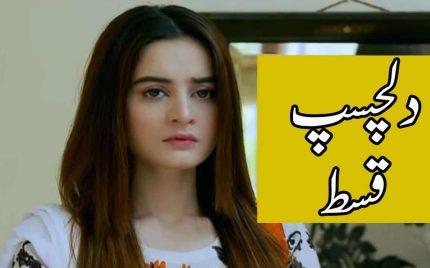 Ghar Titli Ka Par Episode 32 Full Story Audio Review – Dilchasp kist