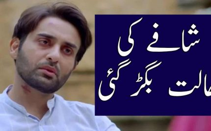 Bay Dardi Episode 26 & 27 Full Audio Review – Shafay Ki Halat Bigr Gaye