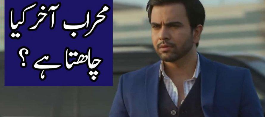 Ishq Tamasha Episode 22 Full Story Audio Review – Mehraab Akhir Kiya Chahta Hai?