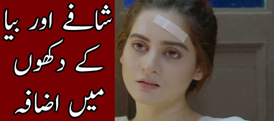 Bay Dardi – Episode 24 – 25 Full Audio Story Review in Urdu – Shafay Aur Bia ke Dukhoon Main Izafa