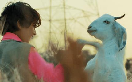 'Jugnu' Teaser Trailer Released
