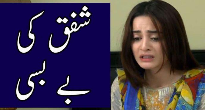 Ghar Titli Ka Par Episode 31 Review – Shafaq Ki Bebasi