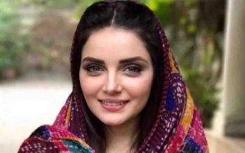 Armeena Khan Claps Back At A Bully Online!