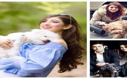 Pakistani Celebrities With Their Pets