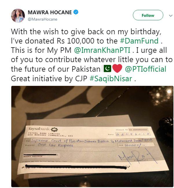 Mawra Hocane Donated For Dam Fund