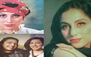 Samina Peerzada's Life & Family