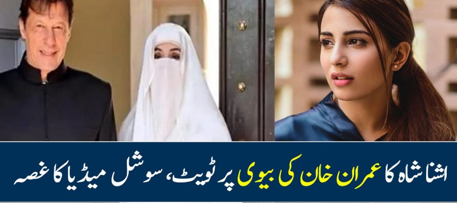Ushna Shah's fierce Tweet After First Lady's Interview And Public Backlash