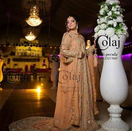 Sara Razi Khan Walima Professional Photoshoot | Reviewit pk