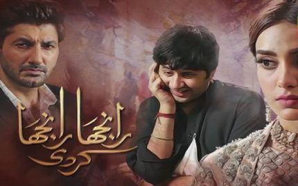 Ranjha Ranjha Kardi Episode 15 Story Review – New Beginning