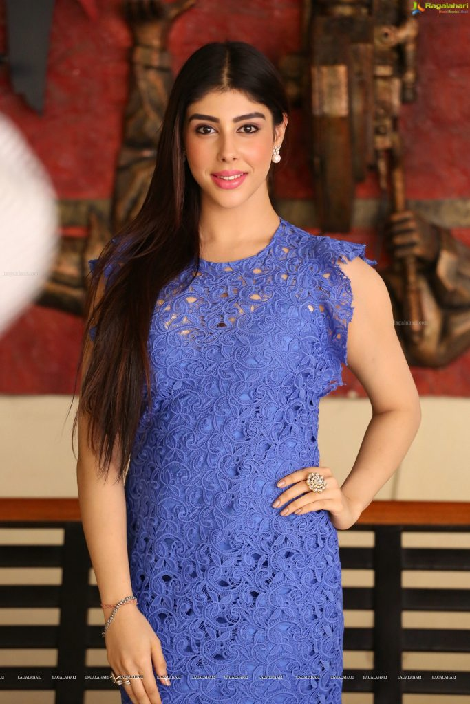 Indian Actress Aditi Singh To Do An Item Number In A Pakistani Film