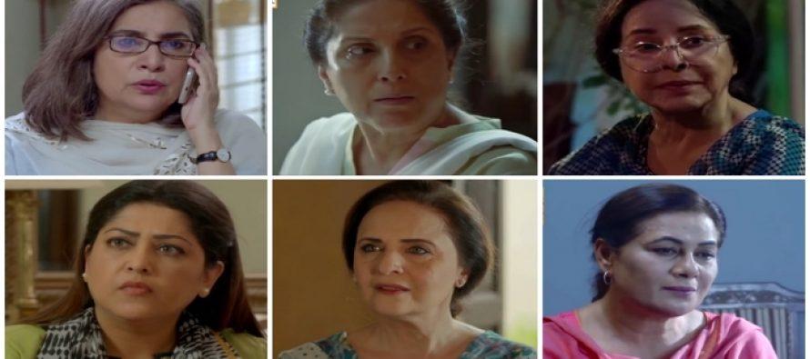 Annoying Amman's of Recent Pakistani Dramas