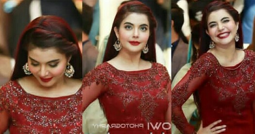 Nida Yasir Stuns At Aineeb Wedding