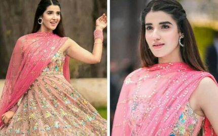 Hareem Farooq Stuns At Cousin Abdullah Qureshi's Wedding