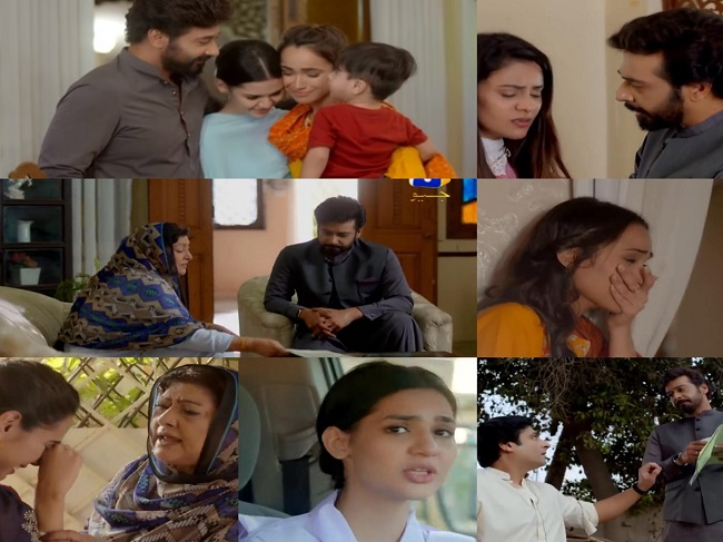 Baba Jani Last Episode Story Review - Realizations & Apologies