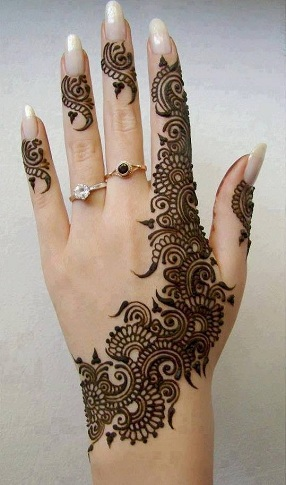 Pakistani Mehndi Design 11