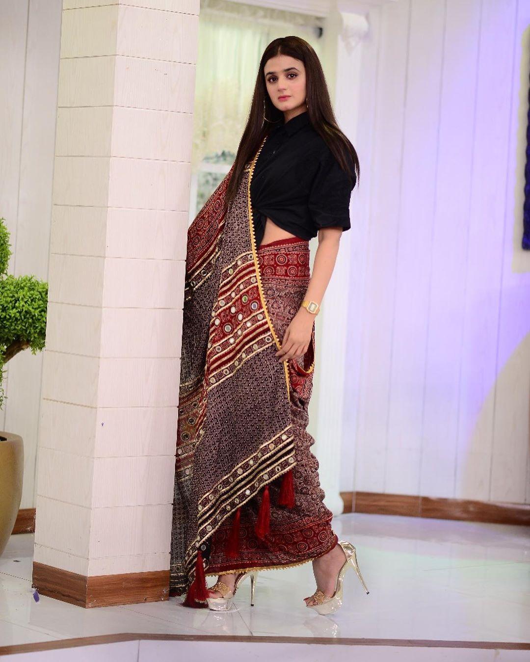 Hira Mani in saree 2