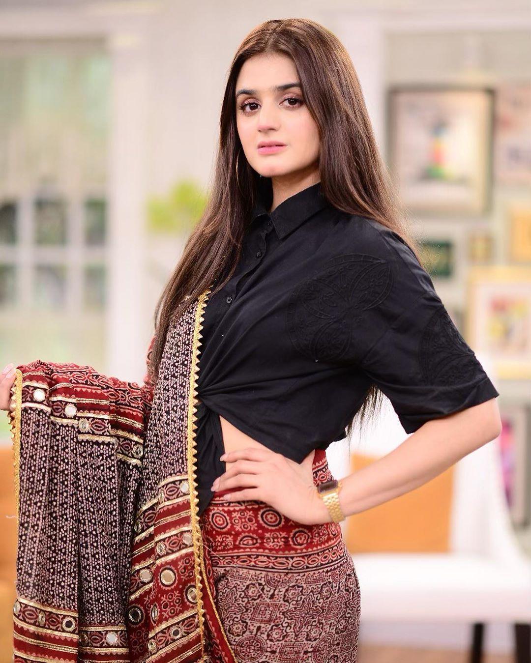 Hira Mani in saree 3