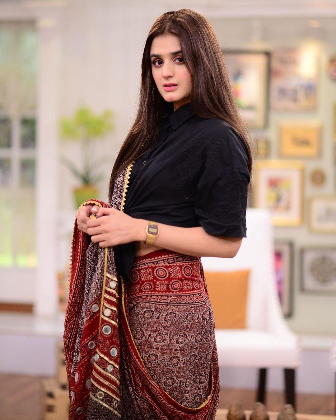 Hira Mani in saree 4