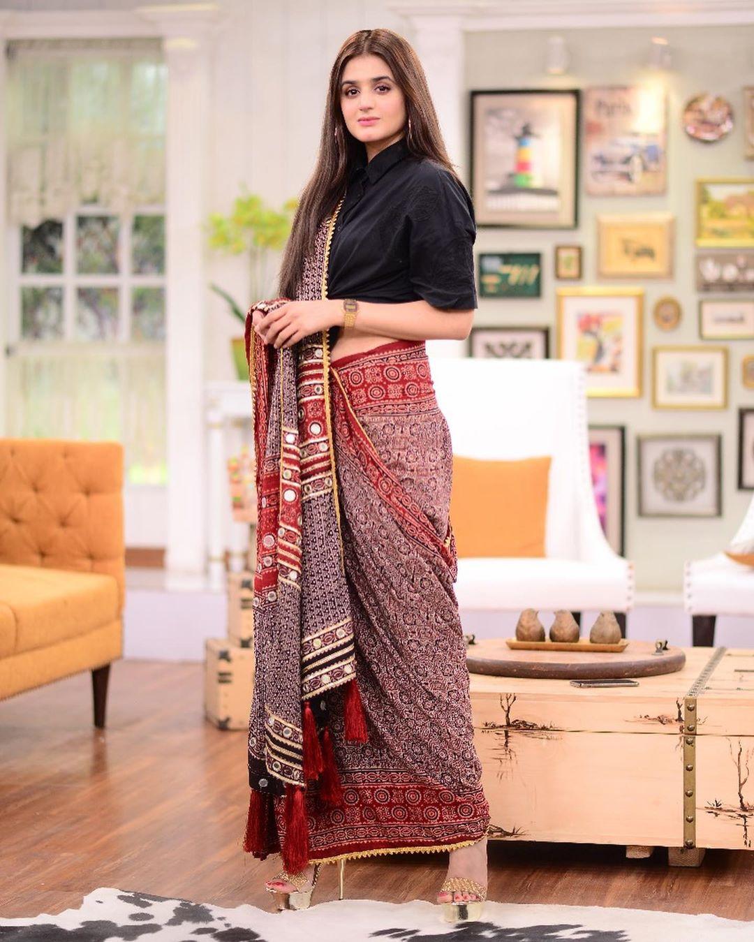 Hira Mani in saree 5
