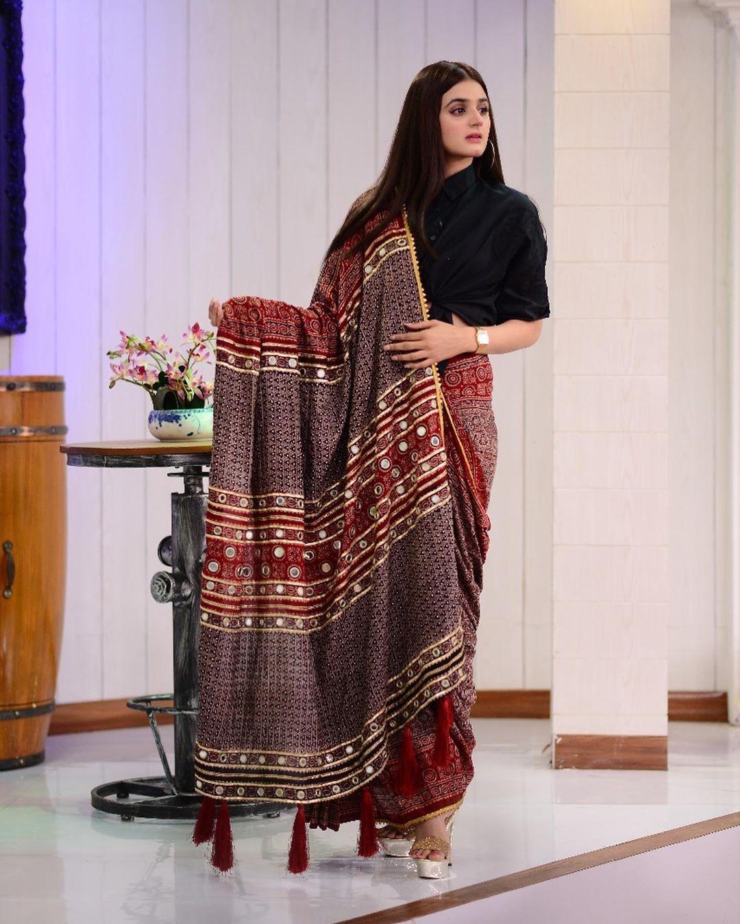 Hira Mani in saree 6