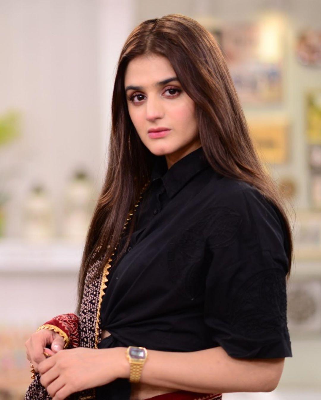 Hira Mani in saree 7