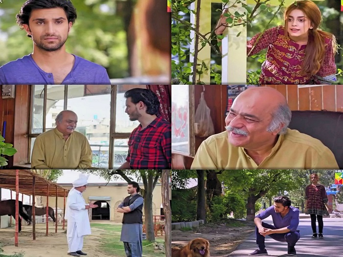 Ehd-e-Wafa Episode 5 Story Review - Highs and Lows