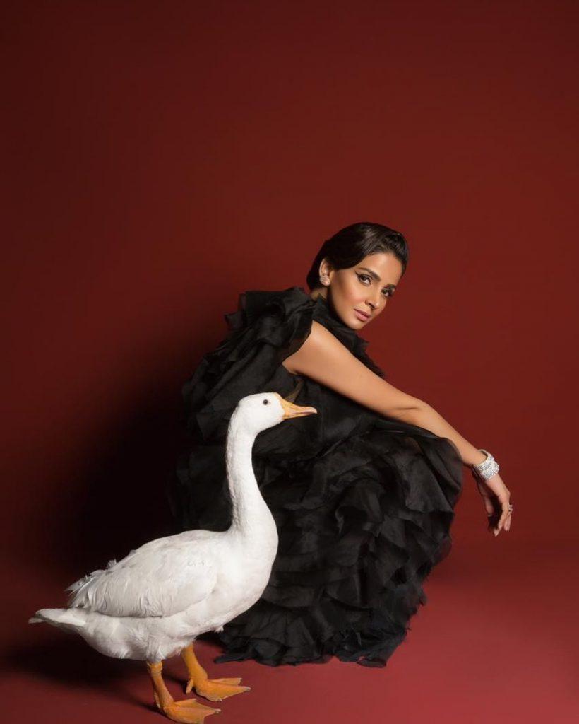 Ali Gul Pir Recreates Hilarious Celebrity Shoots 9