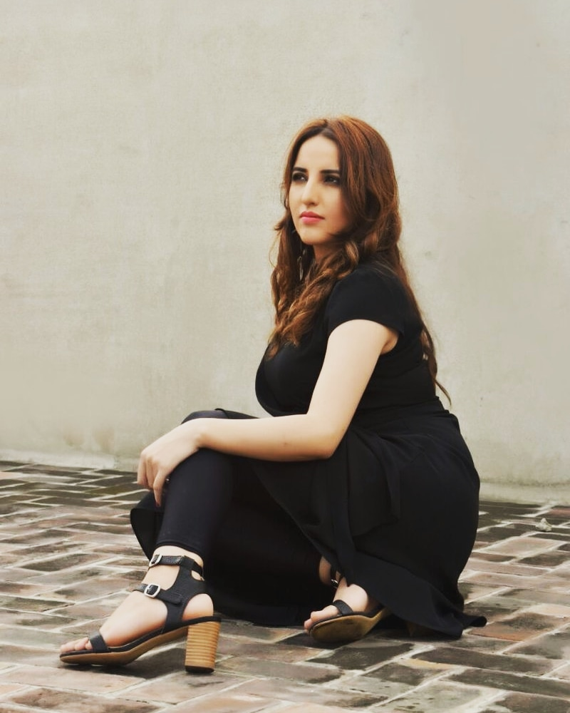 Hareem Shah Harassed At An Event 13